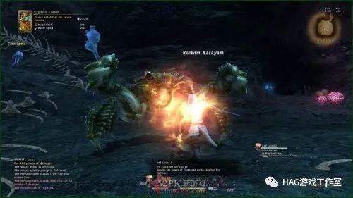 最终幻想14:大家可以看看下面的的收益攻略插图
